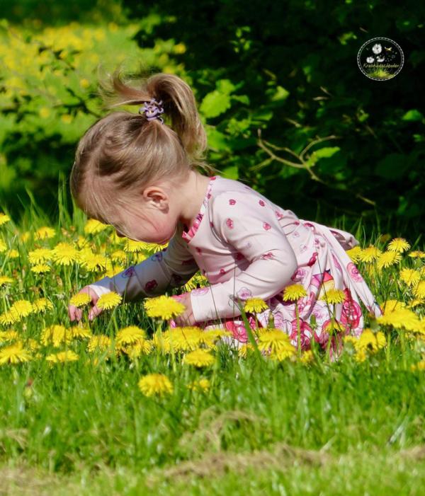 Viskose Modal Jersey Sommerstoff Frühlingsstoff Sommerstoff Blumen Aquarell Bordürenstoff von Mondstoff